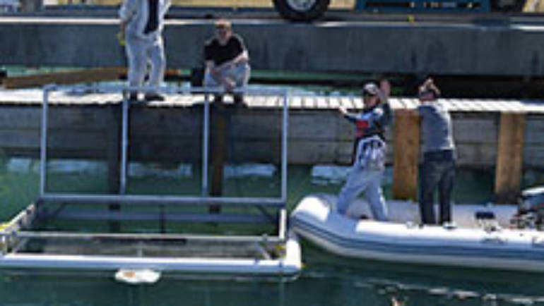 Bluffers participates in Salmon Fish Pen Project for 6th year in a Row