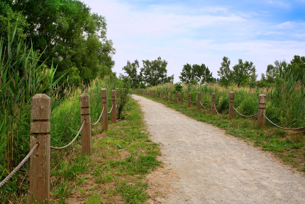the Bluffers Park Trail a walking path you can explore at Bluffers Park Marina, Toronto's only full service marina