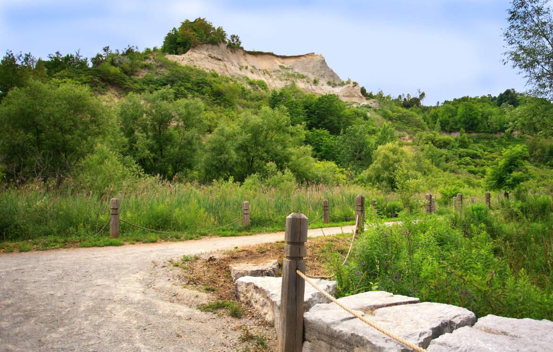 trail5_MG_9363.jpg
